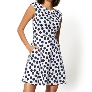 New York & Company seamed cotton fit & flare dress